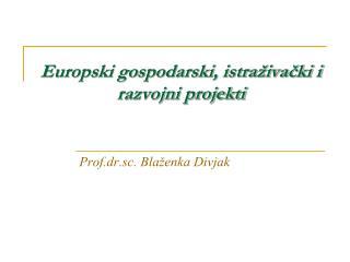 Europski gospodarski, istraživački i razvojni projekti