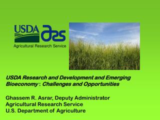 USDA Research and Development and Emerging  Bioeconomy  :  Challenges and Opportunities