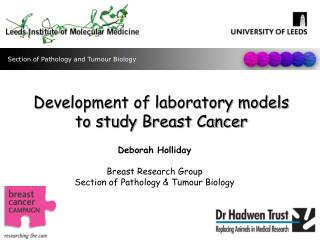 Development of laboratory models to study Breast Cancer