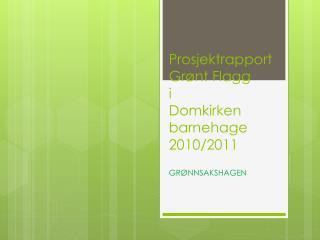 Prosjektrapport Grønt Flagg i Domkirken barnehage 2010/2011