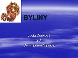 BYLINY