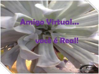 Amigo Virtual...