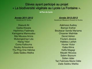 Année 2012-2013 Assisté par Messieurs  Ousseini  et  Sumka Adehossi  Audrey Bamazi Esther
