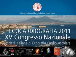 ECOCARDIOGRAFIA CLINICA U.O.C. Cardiologia ed Emodinamica A.O.U. Policlinico-Vittorio Emanuele