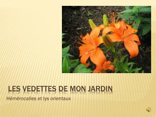 Les vedettes de mon jardin