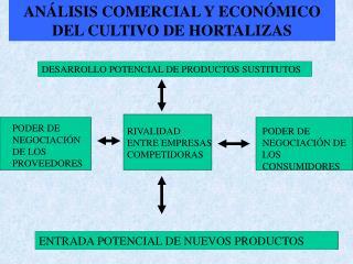 AN LISIS COMERCIAL Y ECON MICO DEL CULTIVO DE HORTALIZAS