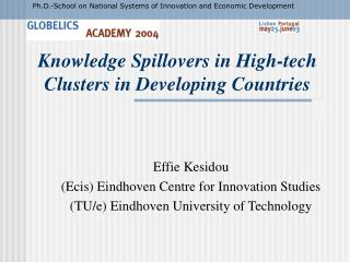 Knowledge Spillovers in High-tech Clusters in Developing Countries