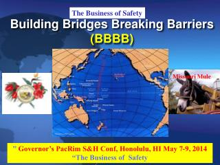 Building Bridges Breaking Barriers  (BBBB)
