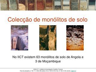 Colecção de monólitos de solo