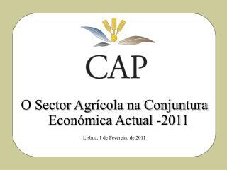 O Sector Agrícola na Conjuntura Económica Actual -2011 Lisboa, 1 de Fevereiro de 2011
