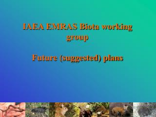 IAEA EMRAS Biota working group  Future (suggested) plans