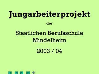 Jungarbeiterprojekt der Staatlichen Berufsschule Mindelheim 2003 / 04