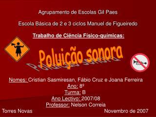 Agrupamento de Escolas Gil Paes Escola B sica de 2 e 3 ciclos Manuel de Figueiredo