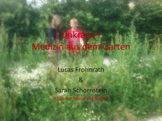 Unkraut –  Medizin aus dem Garten