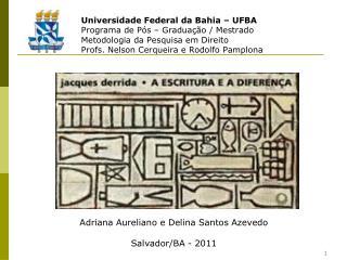 Universidade Federal da Bahia – UFBA Programa de Pós – Graduação / Mestrado