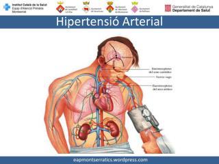 Hipertensió Arterial