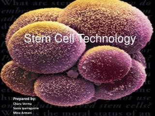 Stem Cell Technology