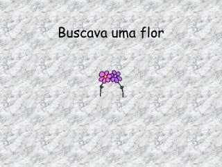 Buscava uma flor