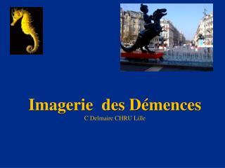 Imagerie  des D�mences C  Delmaire  CHRU Lille
