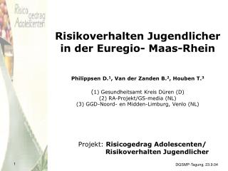 Projekt:  Risicogedrag Adolescenten/   Risikoverhalten Jugendlicher