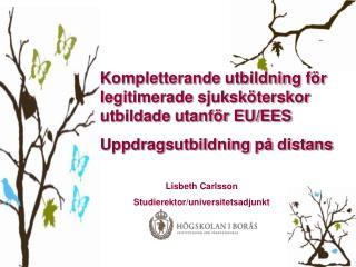 Kompletterande utbildning för legitimerade sjuksköterskor utbildade utanför EU/EES