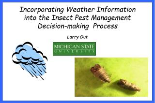 Incorporating Weather Information into the Insect Pest Management Decision-making  Process