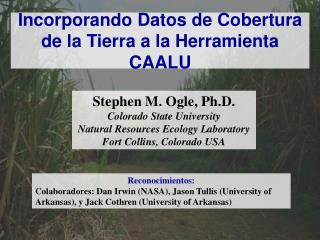 Incorporando Datos de Cobertura de la Tierra a la Herramienta CAALU