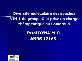 Diversit� mol�culaire des souches  VIH-1 du groupe O et prise en charge th�rapeutique au Cameroun