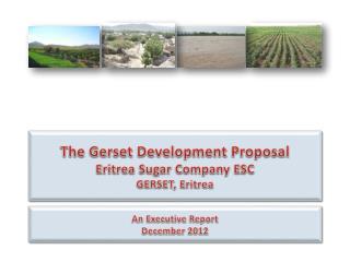 An Executive Report December 2012