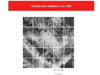 Clouds and radiation in a LSM