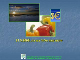 סיכום עונת פלפל בערבה, 21.5.2009