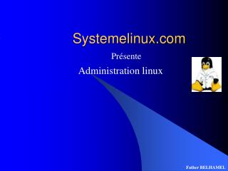 Systemelinux