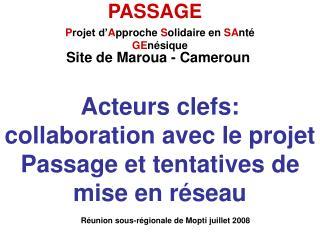 Acteurs clefs: collaboration avec le projet Passage et tentatives de mise en réseau