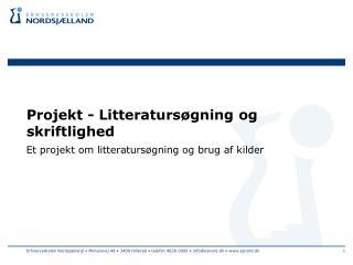 Projekt - Litteratursøgning og skriftlighed