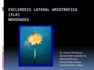 Esclerosis Lateral Amiotrófica (ELA) Novedades