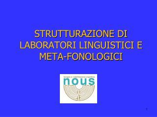 STRUTTURAZIONE  DI  LABORATORI LINGUISTICI E META-FONOLOGICI