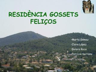RESIDÈNCIA GOSSETS FELIÇOS