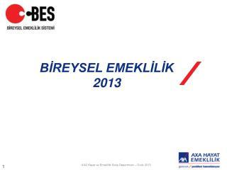 BİREYSEL EMEKLİLİK  2013