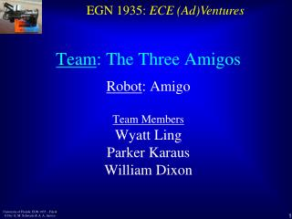 Team : The Three Amigos