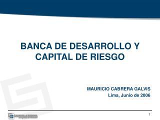 BANCA DE DESARROLLO Y CAPITAL DE RIESGO MAURICIO CABRERA GALVIS Lima, Junio de 2006
