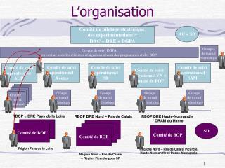 L�organisation