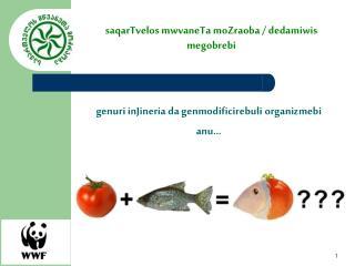 genuri inJineria da genmodificirebuli organizmebi anu...