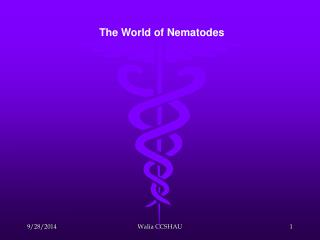 The World of Nematodes