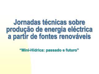 Jornadas técnicas sobre produção de energia eléctrica a partir de fontes renováveis
