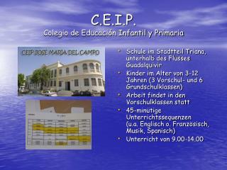 C.E.I.P. Colegio de Educación Infantil y Primaria