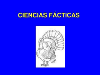 CIENCIAS FÁCTICAS
