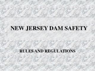 NEW JERSEY DAM SAFETY