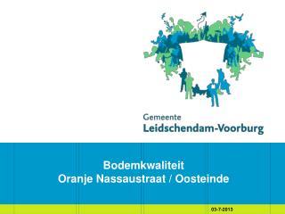 Bodemkwaliteit  Oranje Nassaustraat / Oosteinde