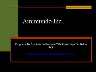 Amimundo Inc.
