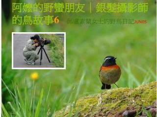 阿嬤的野蠻朋友|銀髮攝影師的鳥故事 6 邱盧素蘭女士的野鳥日記 JUN05